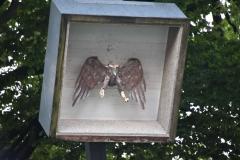 VogelschießenDIR_5148