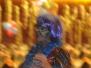 2011-02-10-Karnevalssitzung